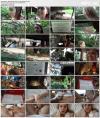 Jill Kassidy (Virtual Vacation Singapore 3/9) (2019) HD 2160p